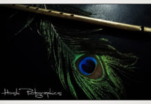 Krishna Flute And Peacock Feather Images