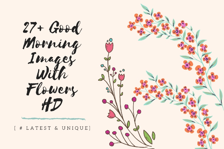 27+ Good Morning Images With Flowers HD