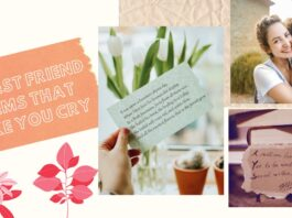 25+ Best Friend Poems That Make You Cry