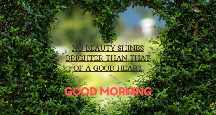 Good Morning Heart Touching Images