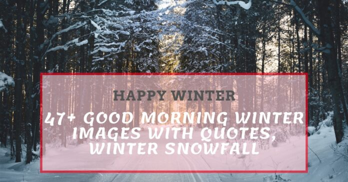 47+ Good Morning Winter Images With Quotes, Winter Snowfall