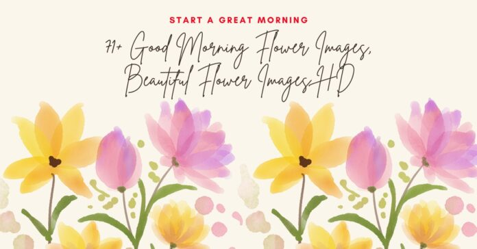 71+ Good Morning Flower Images, Beautiful Flower Images HD