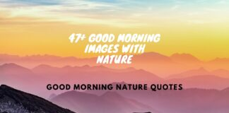 47+ Good Morning Images With Nature, Good Morning Nature Quotes