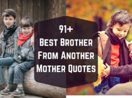 91+ Best Brother From Another Mother Quotes, Birthday Wishes